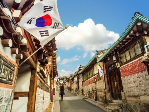チャイエス種類韓国
